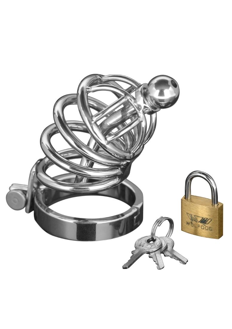 Image of 4 Ring Chasity-Käfig, Asylum, Master Series, Silber